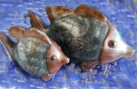 Hand Painted - Statue Fish Set Of 2