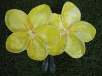 Hand Painted - Plaque Frangipani Flowers Small